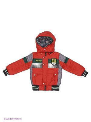 Куртка Happy Bear. Цвет: красный, серый