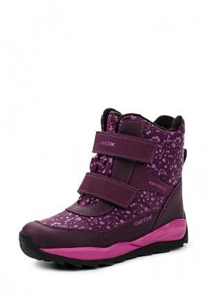 Ботинки Geox. Цвет: фиолетовый