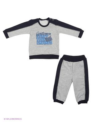 Комплекты одежды Ботифф. Цвет: серый
