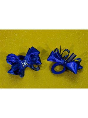 Резинка для волос 2 шт. Bizon. Цвет: синий