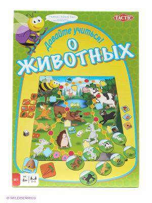 Настольная игра Учим животных Tactic Games. Цвет: зеленый
