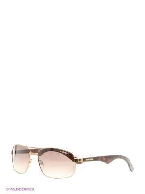 Солнцезащитные очки CARRERA. Цвет: черный, темно-бежевый