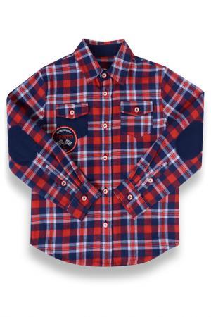 Рубашка Pinetti. Цвет: красный, синий