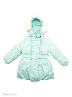 Куртка Avanti Piccolo. Цвет: светло-голубой