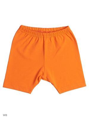 Лосины для девочки Лео. Цвет: оранжевый