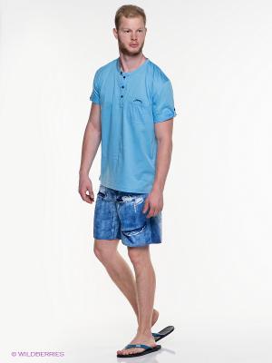 Шорты IGUANA. Цвет: голубой, белый, темно-синий