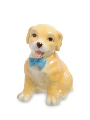 Статуэтка Собака (Pavone) Pavone. Цвет: бежевый