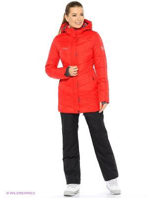Пальто High Experience. Цвет: красный