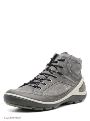Ботинки ECCO. Цвет: темно-серый