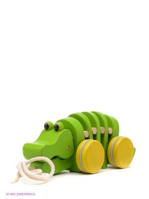 Каталка Танцующий крокодил PLAN TOYS. Цвет: зеленый