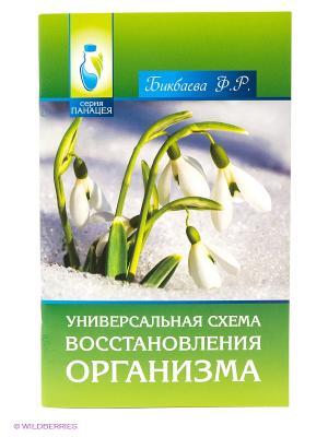 Универсальная схема восстановления организма Феникс. Цвет: зеленый