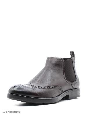 Ботинки Alba. Цвет: темно-коричневый