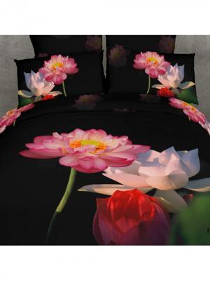 Постельное белье Lotos 2,0 сп. Buenas Noches. Цвет: молочный, розовый, черный