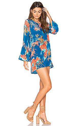 Платье belle Tolani. Цвет: синий