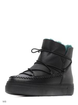 Ботинки JUST COUTURE. Цвет: черный, зеленый
