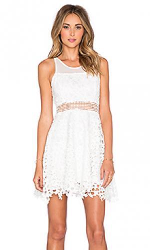 Приталенное и расклешенное платье play date Lovers + Friends. Цвет: белый