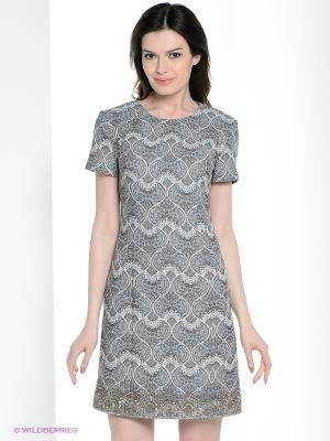 Платье DEVORE. Цвет: серый, светло-голубой