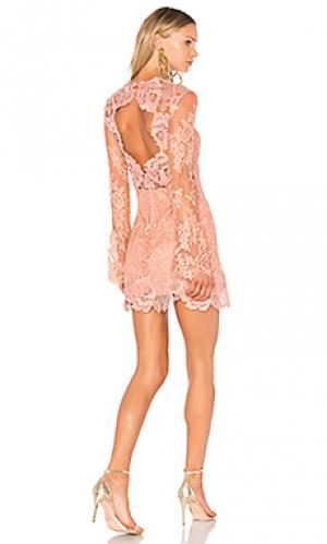 Кружевное мини-платье leondra SAYLOR. Цвет: розовый