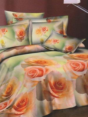 Комплект постельного белья 1,5 сп. BegAl. Цвет: салатовый