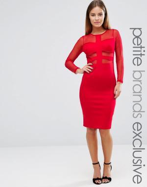 John Zack Petite Облегающее платье с длинными рукавами и сетчатой вставкой Pe. Цвет: красный