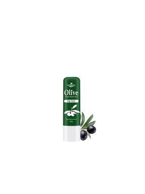 Герболив гигиеническая губная помада с маслом оливы, 4,5гр Madis S.A.. Цвет: оливковый