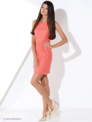Платье Malvin. Цвет: коралловый