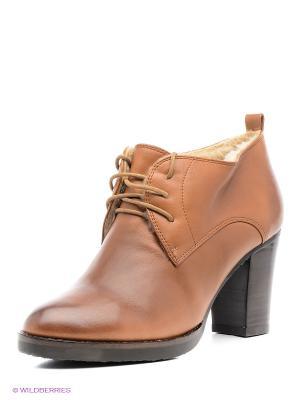 Ботильоны Moda Donna. Цвет: коричневый