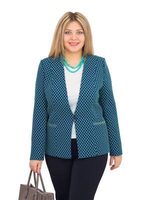 Пиджак BALSAKO. Цвет: синий