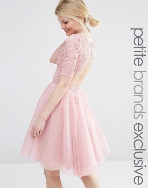 John Zack Petite Платье миди для выпускного с кружевным лифом и вырезами Peti. Цвет: розовый