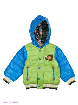 Куртка Kidly. Цвет: зеленый, голубой