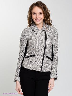 Куртка BARCELONA Salsa. Цвет: молочный, черный
