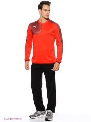 Толстовка Mestre Training Sweat Puma. Цвет: красный