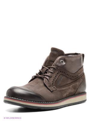 Ботинки GREYDER. Цвет: темно-коричневый