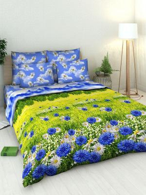 Комплект постельного белья Василиса. Цвет: синий, зеленый