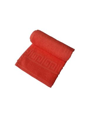 Набор: полотенце махровое 2 штуки ARLONI. Цвет: коралловый