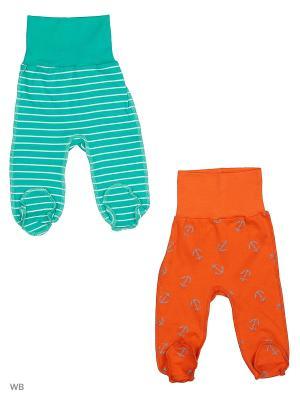 Ползунки 2 штуки Babycollection. Цвет: зеленый, оранжевый