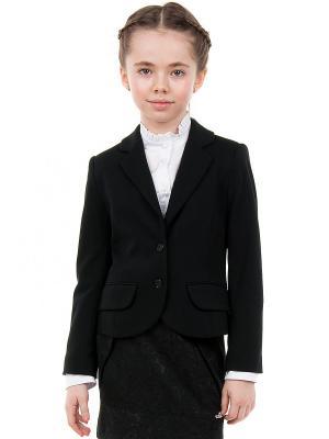 Пиджак SILVER SPOON. Цвет: черный