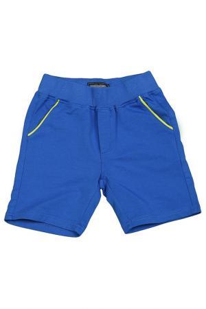 Бермуды ASTON MARTIN. Цвет: синий, лайм