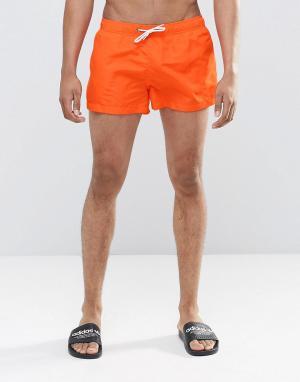 Swells Короткие оранжевые шорты. Цвет: оранжевый