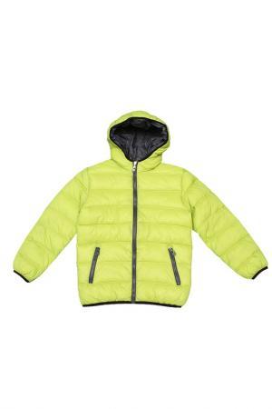 Куртка Dodipetto. Цвет: зеленый