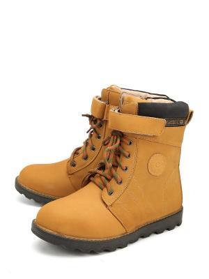 Ботинки Flois. Цвет: оранжевый