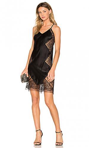 Кружевное платье-комбинация Michelle Mason. Цвет: черный