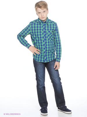 Рубашка Young Reporter. Цвет: зеленый