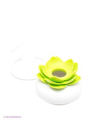 Контейнер дл хранени ватных палочек Qualy. Цвет: белый, светло-зеленый