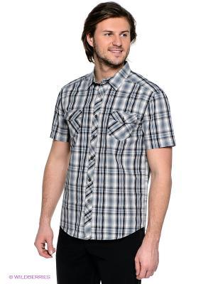 Рубашка Finn Flare. Цвет: серый, серо-зеленый, черный