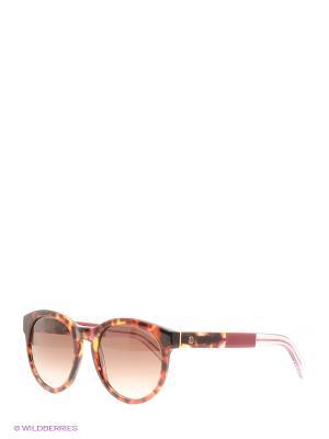 Солнцезащитные очки Tommy Hilfiger. Цвет: черный, коричневый