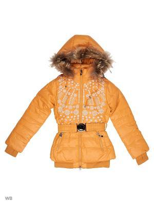 Куртки Arista. Цвет: оранжевый