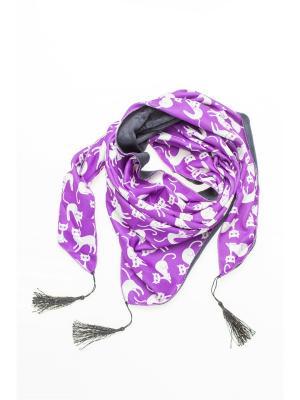 Платок Shapkoff. Цвет: фиолетовый