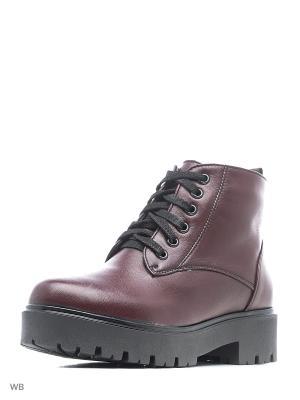 Ботинки ELITE. Цвет: бордовый