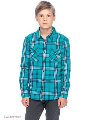Рубашка Tommy Hilfiger. Цвет: зеленый, белый, темно-синий